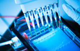 Electrophoresis products