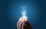 CRISPR/Cas9 Technology