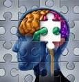 Brain diseases
