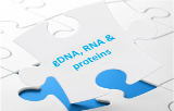 gDNA, RNA and proteins
